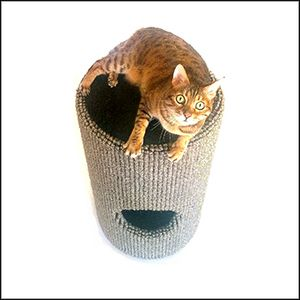 700mm high Bobcat with toy compartment in Wool Ribbed Carpet