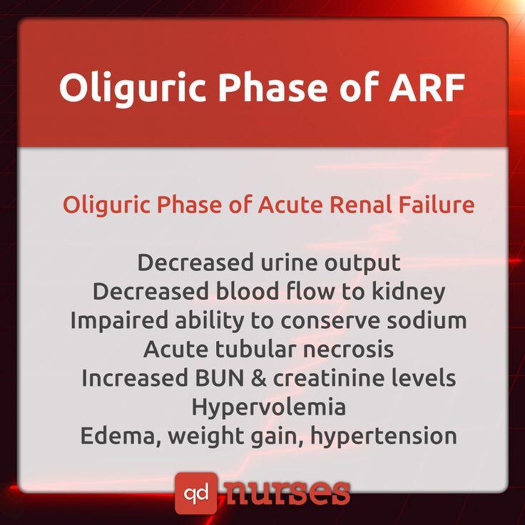 Oliguric Phase of Acute Renal Failure, save now & study later! #nursing #nurse #rn #nursingstudent #nclex #mnemonic #meme