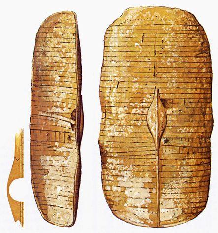 Scutum : bouclier romain