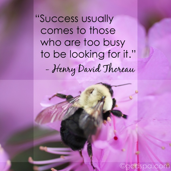"""Success comes to those who are too busy..."" #quotes #Thoreau"