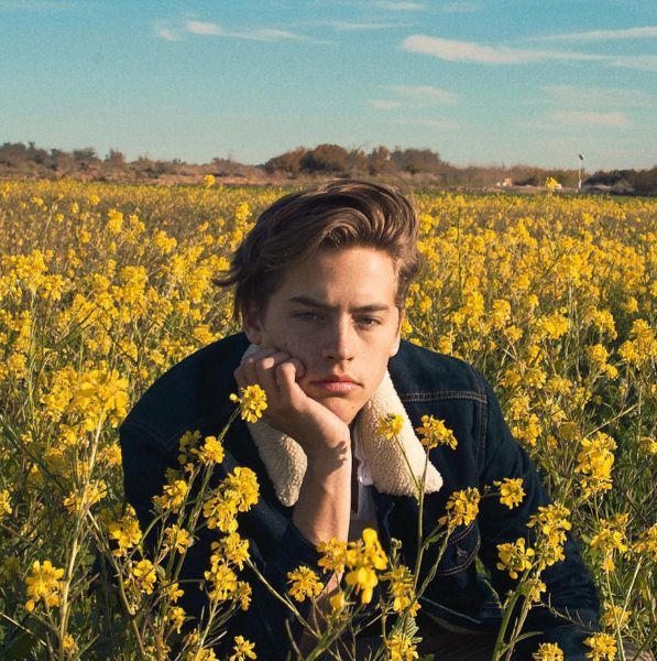"||fc:Cole Sprouse|| ""sup I'm Cole... I like art and photography... I'm addicted to smoking... I might seem like an ass but that's only when you're being an ass to me"" smirks ""otherwise I'm a pretty chill guy.. I'm 19, single.. Relationships never do me any good.. But I guess I'm looking forward to meeting some people I guess.. Chat?"""