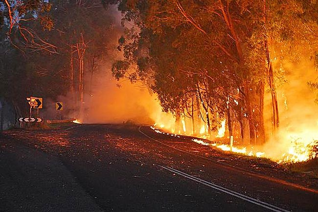 Fires at Drouin West, main Neerim Road. Picture: Andrew Bukolt