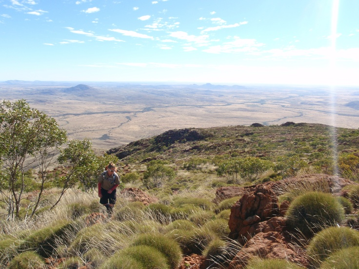 #greatwalker. On the way to the summit of Mount Woodroffe, South Australia's tallest mountain and a very important part of Aboriginal culture
