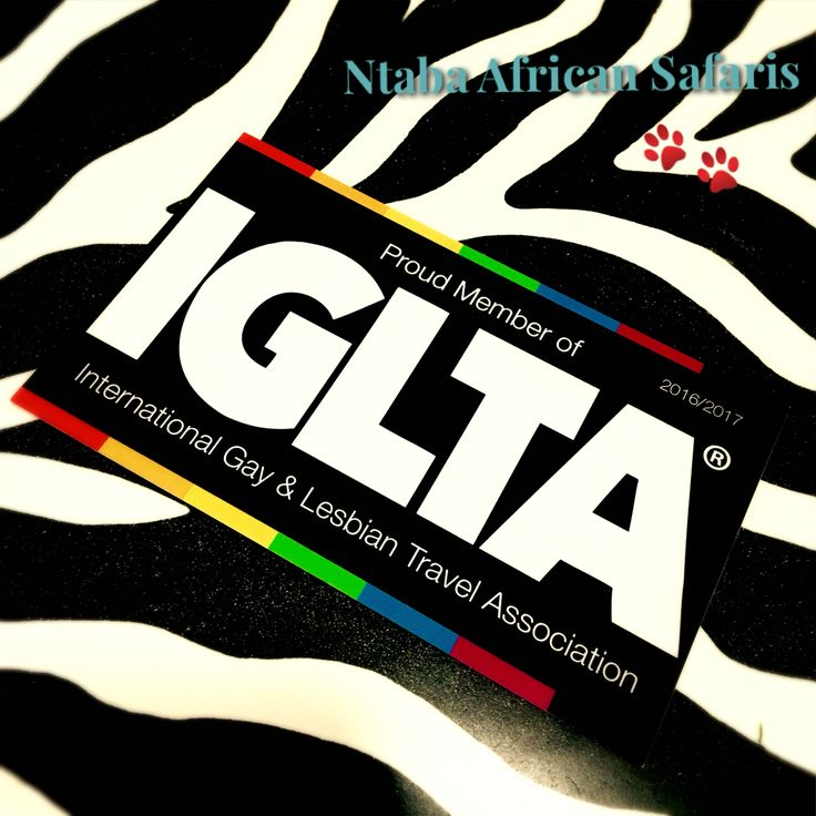 Keep an eye out for our upcoming #LGBT Itinerary to Southern #Africa!  ntabaafrica.com   #travel #adventure #luxury