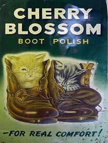 Dyi Leather Shoe Polish