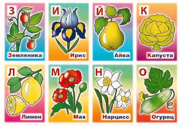 могу названия садовых с картинками по алфавиту церемониальным признакам брак