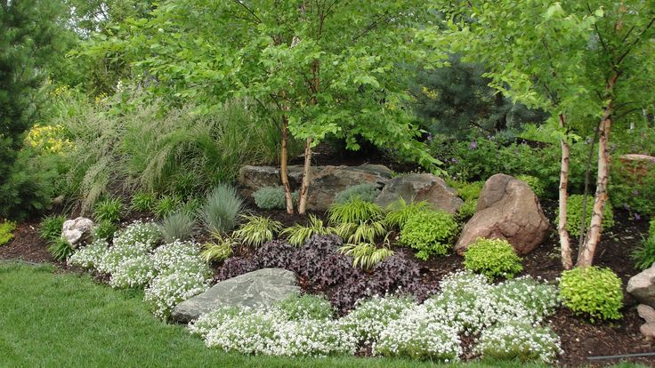 love the combo of rocks, trees, grasses