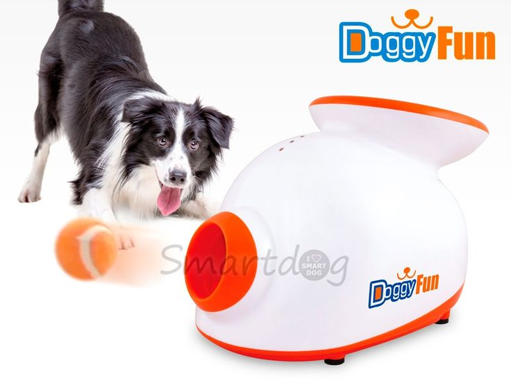 Doggy Fun Apportkanon - Gratis levering og bedste pris