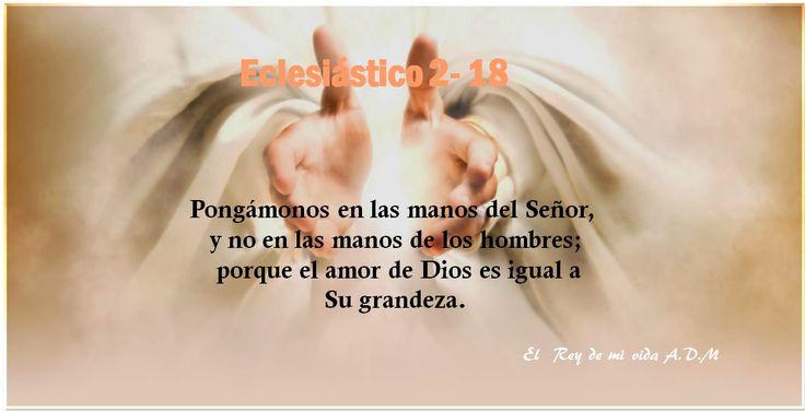 Eclesiástico 2 -18. Pongámonos en las manos del Señor, y no en las manos de los hombres; porque el amor de Dios es igual a su grandeza.
