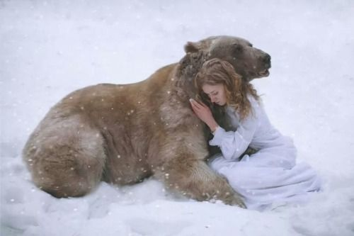 Bear Hugs!  My love, my animal heart.  Katerina Plotnikova