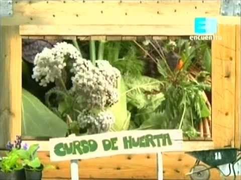Curso de huerta Orgánica - 10 (La cosecha) 2 - YouTube