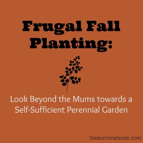 Frugal Fall Planting: Self-Sufficient Perennial Garden plants that you can put in the ground when temps are cool.  | www.TheSurvivalMom.com