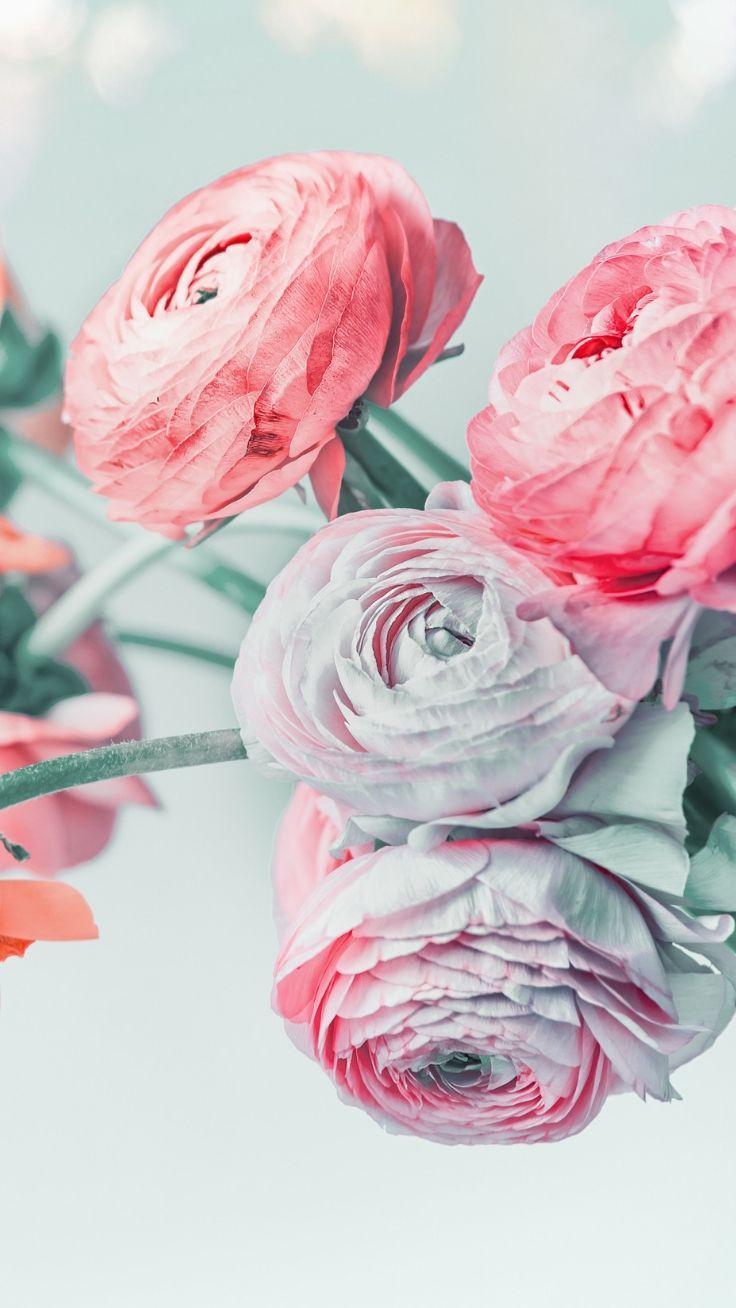 27 Super Pretty Iphone 8 Plus Wallpapers Preppy Wallpapers Floral Wallpaper Iphone Crystal Iphone Wallpaper Original Iphone Wallpaper