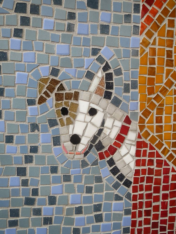 dog behind curtain detail of hoxton mosaic old street hackney