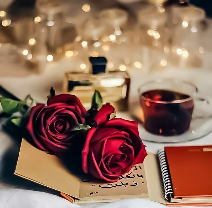 Pin By Sou On Roses Are Red My Love In 2020 Love Rose Flower Red Roses Wallpaper Beautiful Rose Flowers