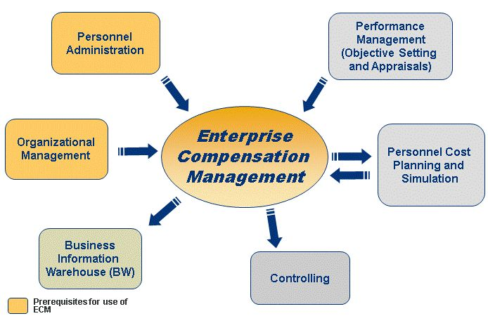SAPexperts HR Tip #9 u2013 Integrating SAP Enterprise Compensation - cognos enterprise planning resume