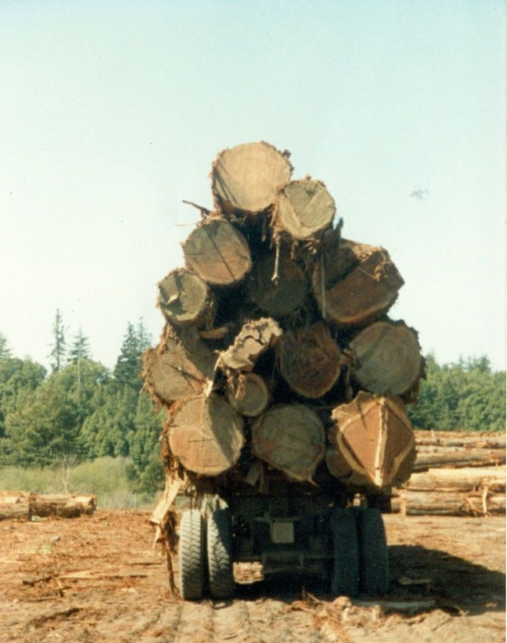 Three Log Load ~ Best images about classic logging on pinterest trucks