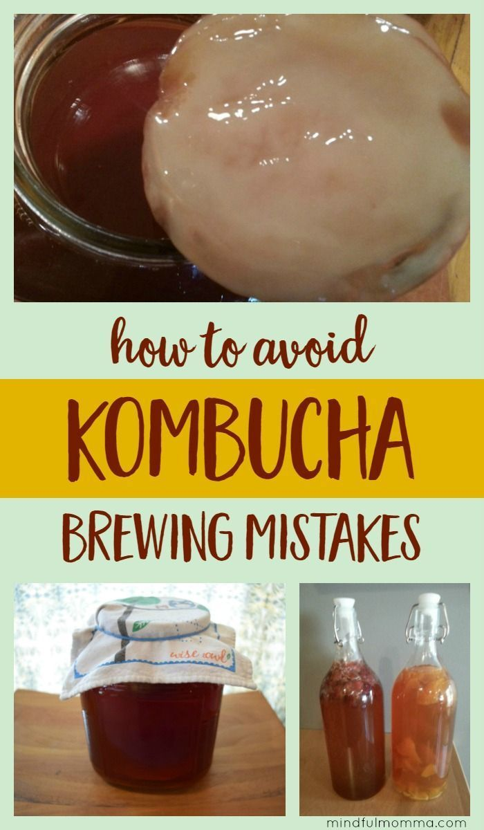 Homemade kombucha brewing mistakes and how to avoid them. Plus the kombucha brewing method that works best for me. | fermentation | probiotics | healthy beverages | how to make kombucha