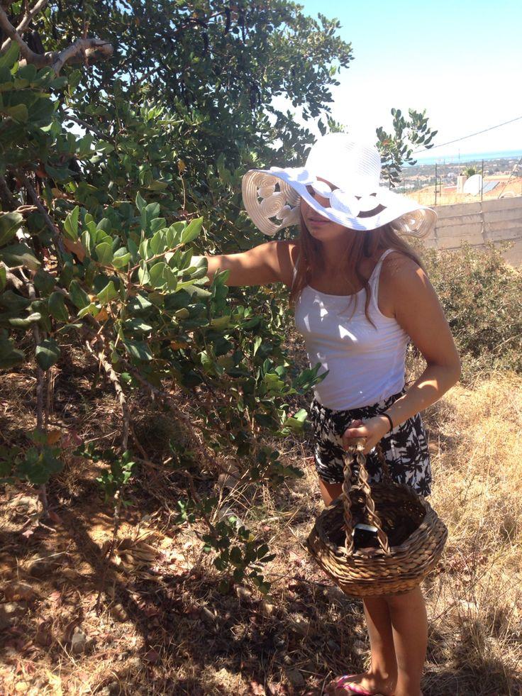 Holistic living in Cretan nature