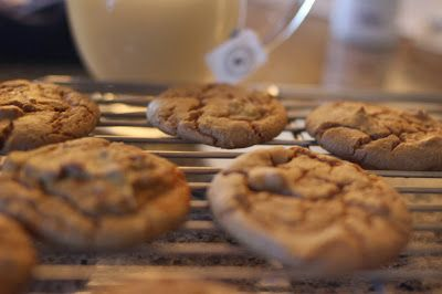 Running Girl Health and Fitness: Pumpkin Spice Garbanzo Bean Cookies