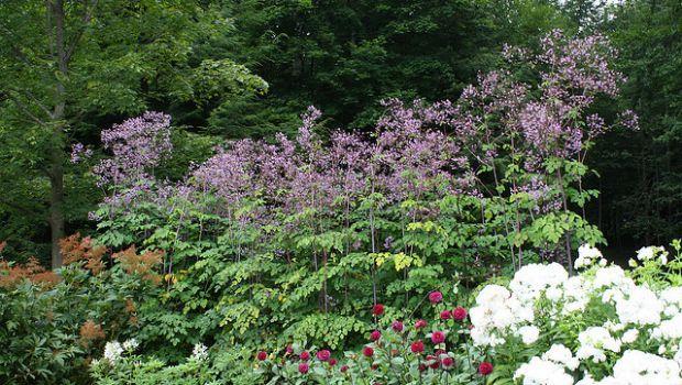 The formal garden at Edith Wharton's Mount Lenox, MA estate and gardens.
