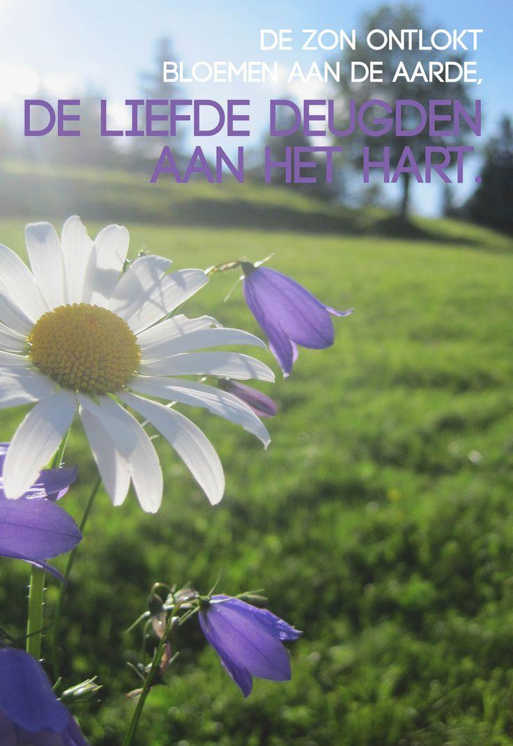 Citaten Over De Zon : Beste ideeën over zon citaten op pinterest