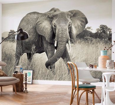 ELEPHANT WALL MURAL FROM OUR NATIONAL GEOGRAPHIC COLLECTION FREE SHIPPING!*  A Massive U0026 Wise Part 46