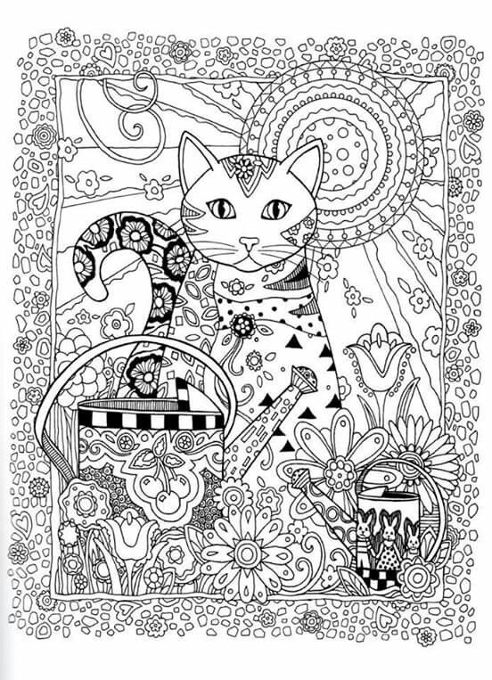 complicated cats a fiddly feline coloring book complicated coloring