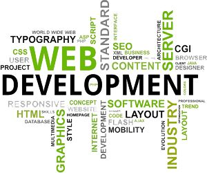 We at Shaheen Networking, provides high quality Word Press theme designing and development services. Word Press Development Services