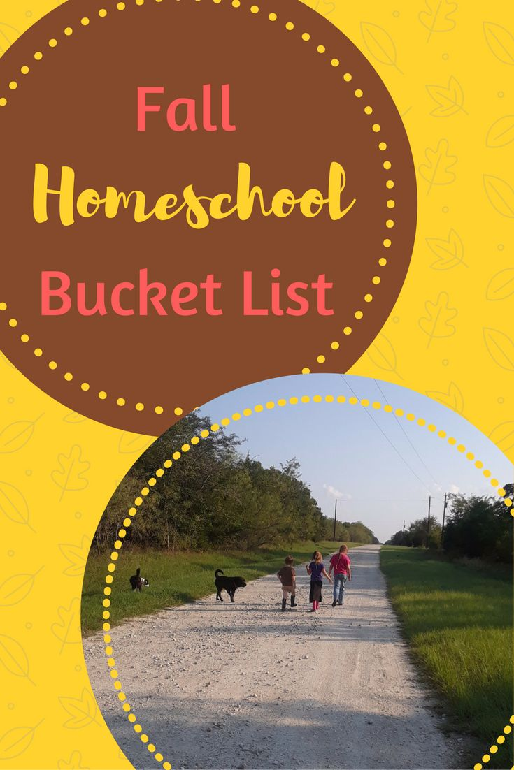 Do you have a fall homeschool bucket list? If not, try some of these ideas to take advantage of the fantastic fall weather!