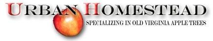 Urban Homestead - Specializing in the propagation of heirloom apple trees