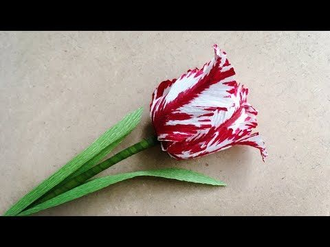 ABC TV | How To Make Parrot Tulips Paper Flower From Crepe Paper - Craft...