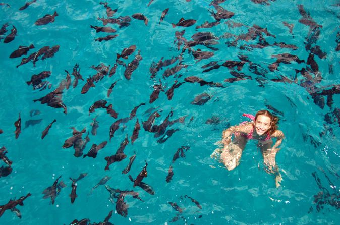 Bay of Sosua Catamaran Cruise and Snorkeling - Lonely Planet