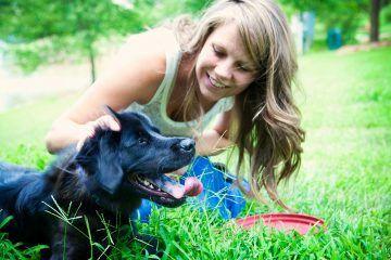 Comment faire du dentifrice pour chien fait maison ? (avec images) | Dentifrice pour chien ...