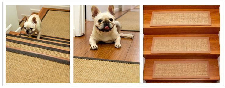 stair carpet treads so dogs can walk up stairs easier.. plus has a cream french bulldog in their pictures.. so cute.