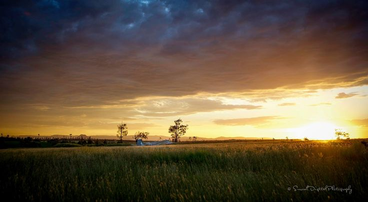 Canberra Bomber in the field at sunset
