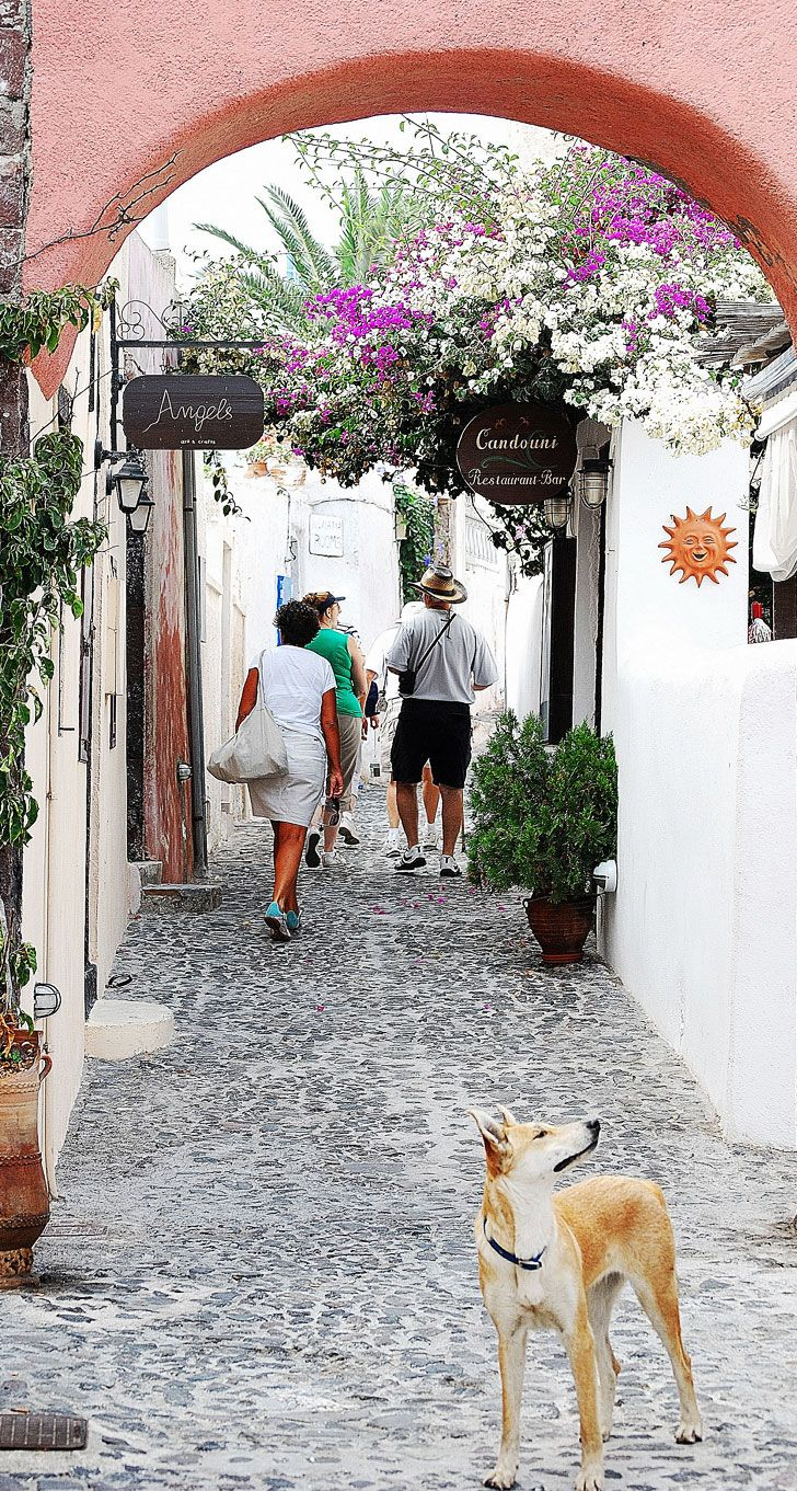 Walking through Oia, Santorini , Greece  http://www.yourcruisesource.com/two_chefs_culinary_cruise_-_istanbul_to_athens_greek_isles_cruise.htm