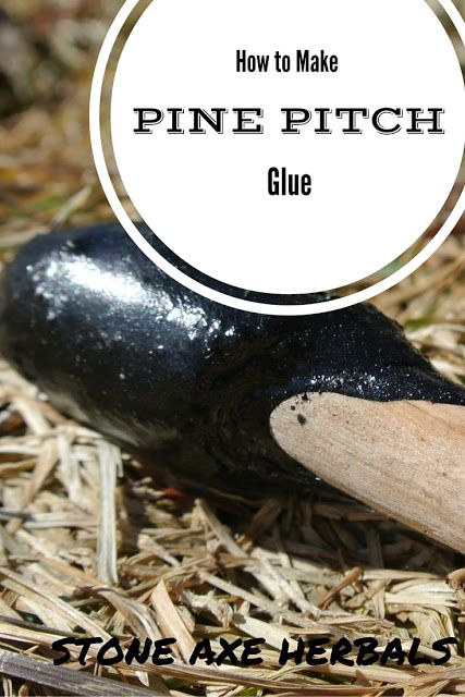 Stone Axe Herbals: How to Make Pine Pitch