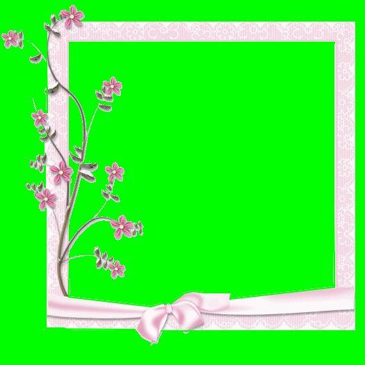 cadre-rose-a-fleur-2810.gif