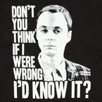 The Big Bang Theory Sheldon shirt - I can think of a few people that need this shirt.