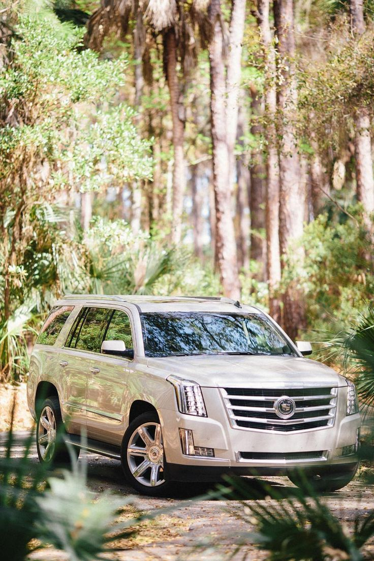 2015 Escalde-ADVENTURES WITH CADILLAC via A House in the Hills