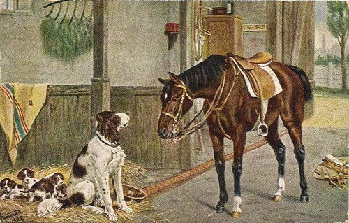 antique english springer spaniels | 1907 Horse English Springer Dog Puppies Barn Stable Stall Antique ...