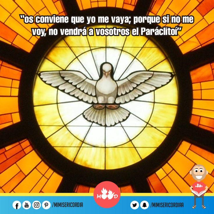 """""""Sin embargo, os digo es la verdad: os conviene que yo me vaya; porque si no me voy, no vendrá a vosotros el Paráclito"""". (Jn 16, 5-11)"""