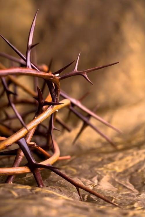 ..тернии символизируют не грех, а последствия греха... Бунт приводит к терниям... если плодом греха являются тернии, то разве терновый венец на челе Христа не является образом плода нашего греха, который пронзил Его сердце?.. Иисус никогда не знал плодов греха... до тех пор пока Он не стал грехом за нас. И когда это произошло, все эмоции греха навалились на Него, как тени в лесу. Он испытывал беспокойство, вину и одиночество... Он сделал это ради тебя. Только ради тебя. (ст.15-16)