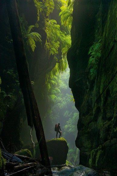 Blue Mountains, Australia.     Chcesz zobaczyć to na żywo? Na www.australia.info.pl znajdziesz aktualne oferty wyjazdów, a także zarezerwujesz hotel, willę lub bilety lotnicze.