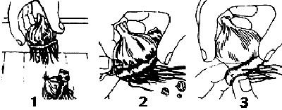 three part diagram with hand and corm