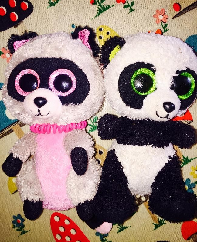 Found on 14 Aug. 2016 @ Temple Newsham. 2 TY TOYS, Panda and Racoon found on a…