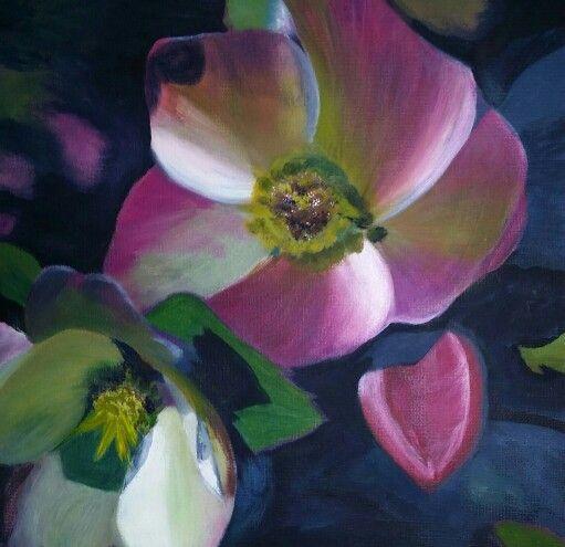 Helebore - Winter's Rose by Caro