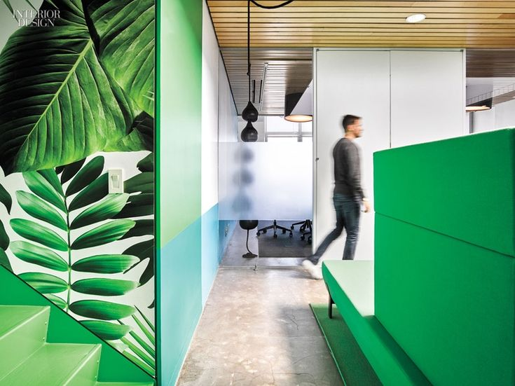 The Office Of Marketing Agency Barrows Brings African Jungle To Concrete