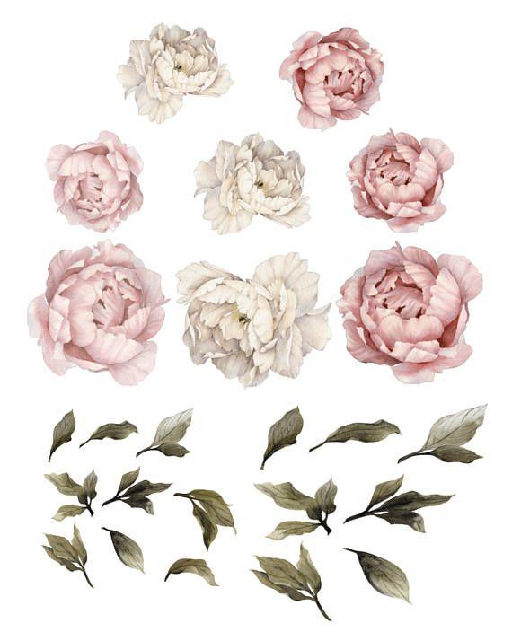 Girls Nursery Decals – Baby Girls Decor – Baby Girls Room – Baby Pink – Nursery Wall Decals – Baby Cute – Baby Fashion – Decor Peony Peonies